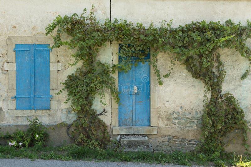 常春藤覆盖的大厦,第茂,法国 库存图片