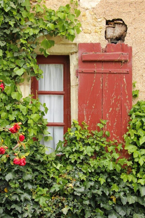 常春藤围拢的五颜六色的窗口 尚翁索 法国 库存照片