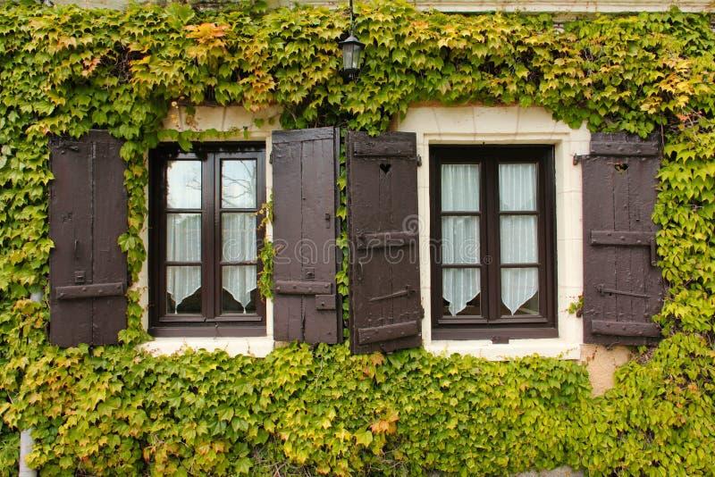 常春藤围拢的双窗口 Chenonceau 法国 库存图片