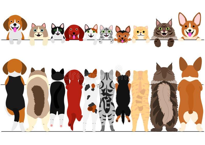 常设小前面的狗和猫和后面边界集合 库存例证