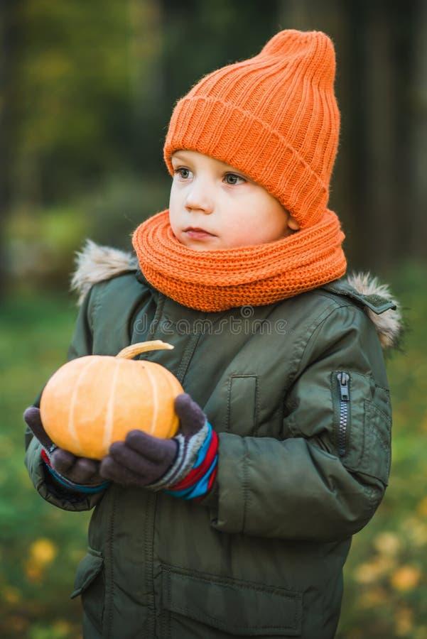 帽子和围巾的男孩用南瓜 库存图片