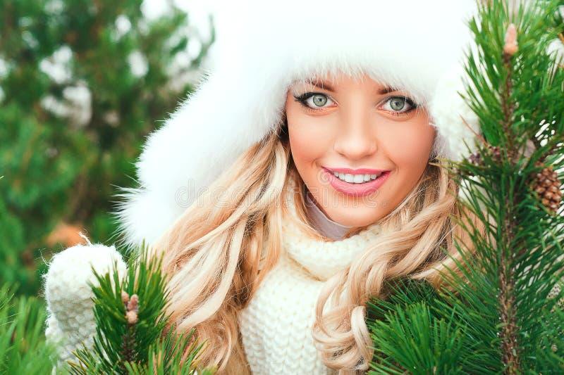 帽子的妇女,手套,围巾,毛线衣,毛皮在冬天冷杉森林里 免版税库存图片