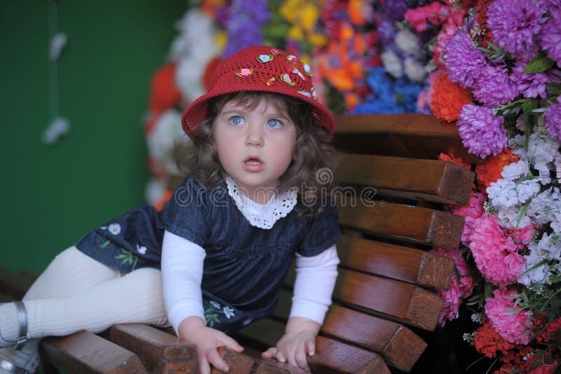 帽子的小女孩 库存图片