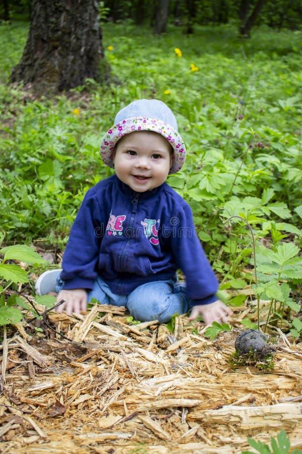 帽子的快乐的女孩探索在森林婴孩的下落的树9个月在森林,软的焦点儿童画象里 库存照片
