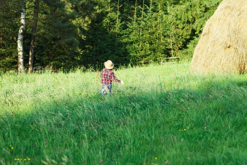 帽子的男孩跑草到森林,从后面的看法 库存照片