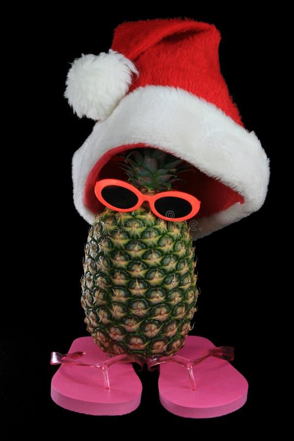 帽子菠萝傻的圣诞老人 库存图片