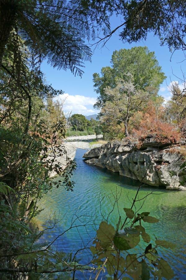 干净的清楚的河,新西兰 免版税库存图片