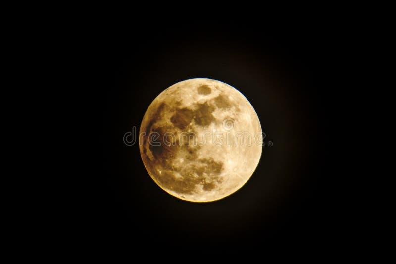 干净的被隔绝的月亮 图库摄影