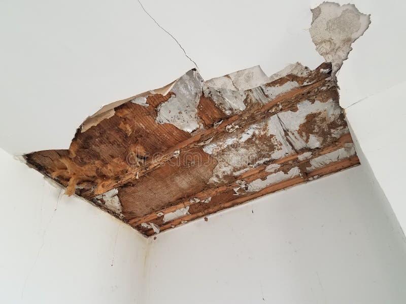 干式墙和天花板损伤 库存图片