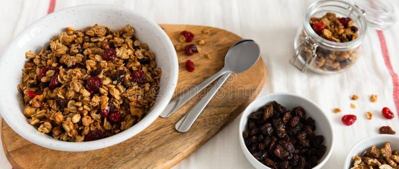 干早餐谷物 有亚麻籽、蔓越桔和椰子的嘎吱咬嚼的蜂蜜格兰诺拉麦片碗 健康,vegeterian纤维食物 免版税库存图片