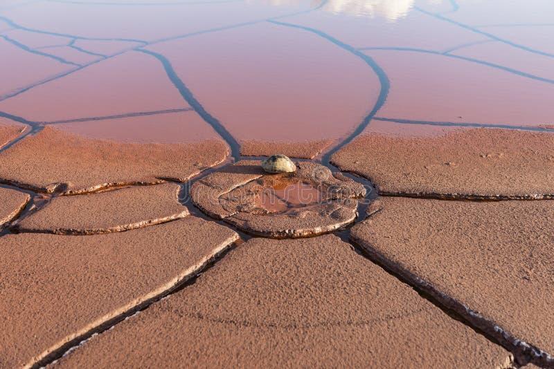 干旱的土壤和雨水 图库摄影
