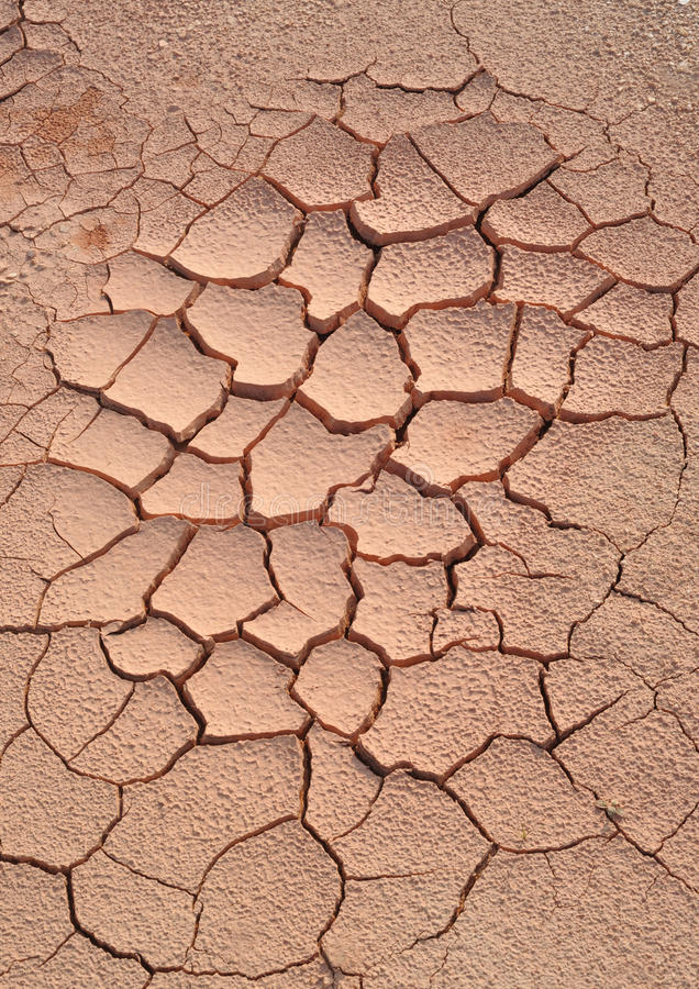 干旱的地产 库存照片