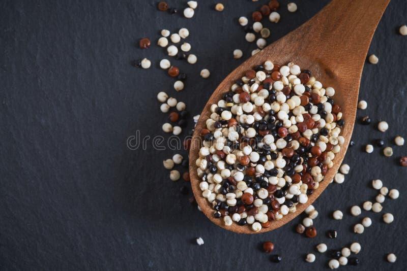 干未加工的大豆剁碎 图库摄影