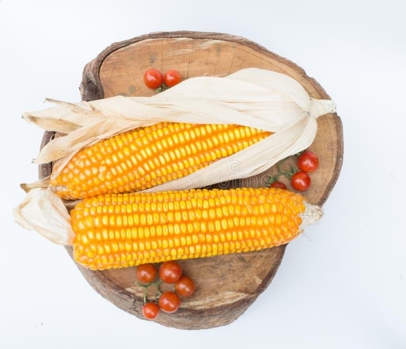 干棕色玉米 免版税库存照片