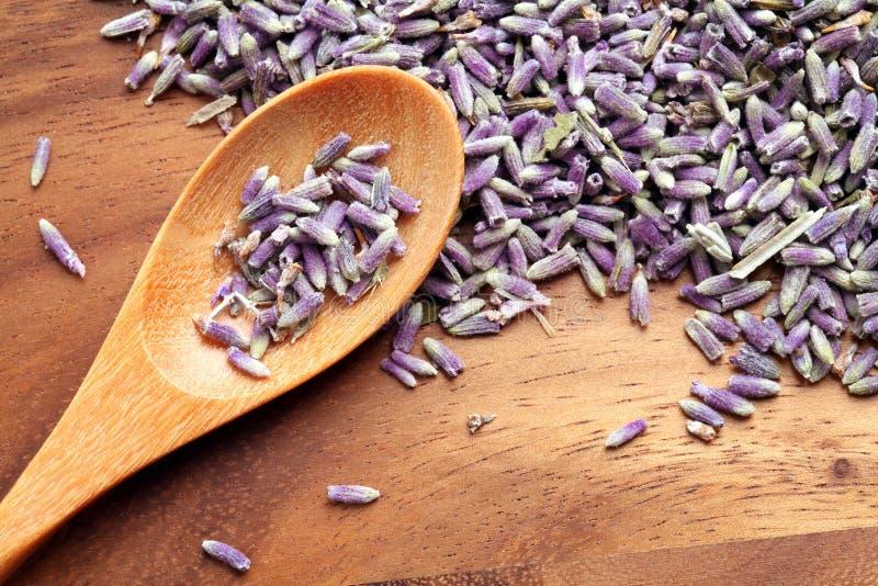 干淡紫色 库存照片