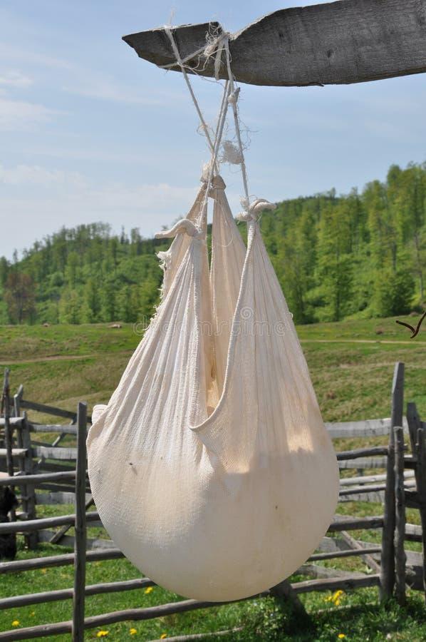 干燥传统乳酪 免版税库存照片