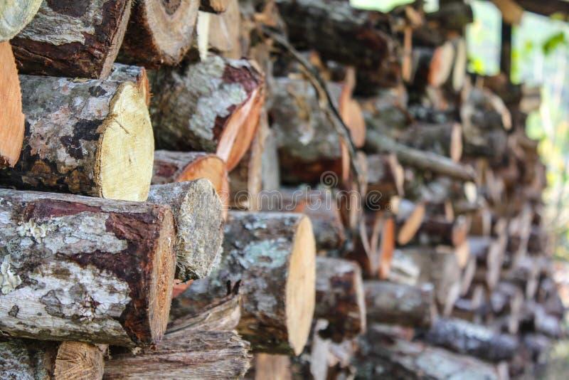 干燥切好的木柴背景 免版税库存图片