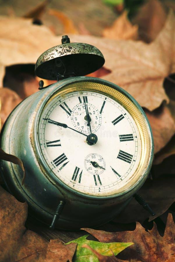 干燥叶子围拢的老闹钟 库存图片