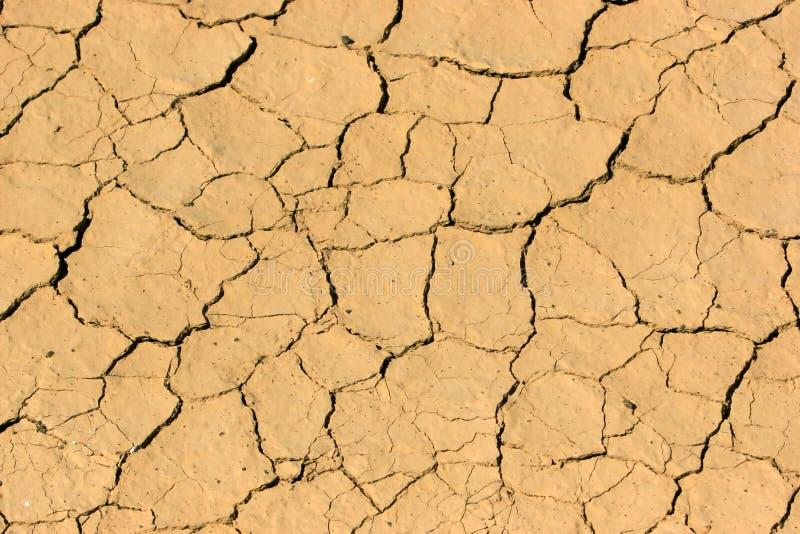 干燥和干旱 图库摄影