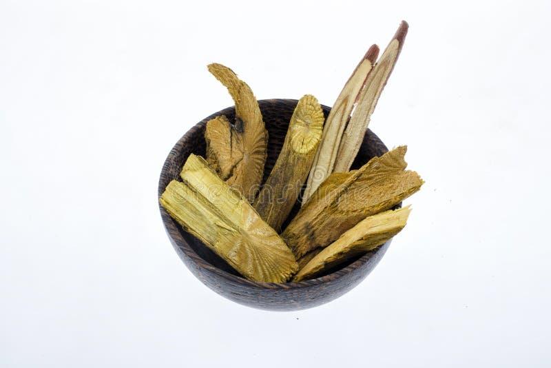 干燥姜黄根或吠声在木碗 库存照片