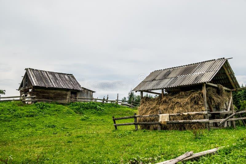 干燥干草存贮在村庄 免版税库存图片