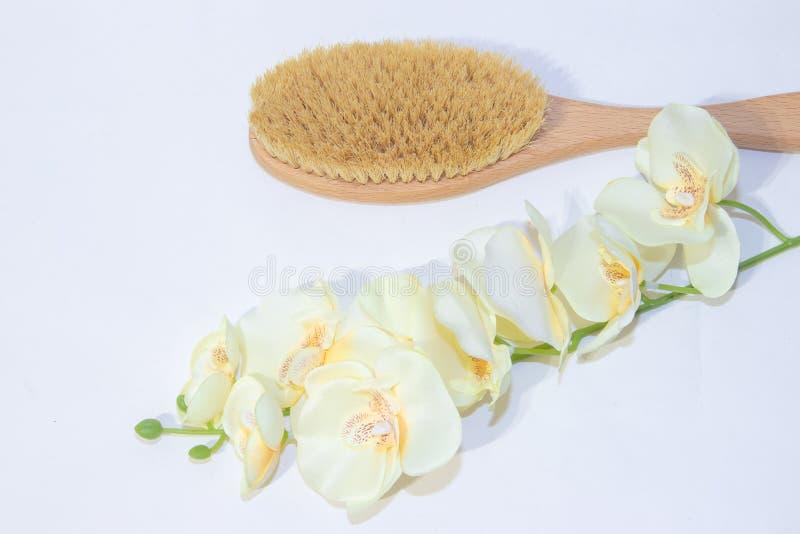 干燥按摩的刷子 新的整容术 摆脱脂肪团和伸展线 适当的护肤 接近的重点图象有选择性的温泉处理 库存图片