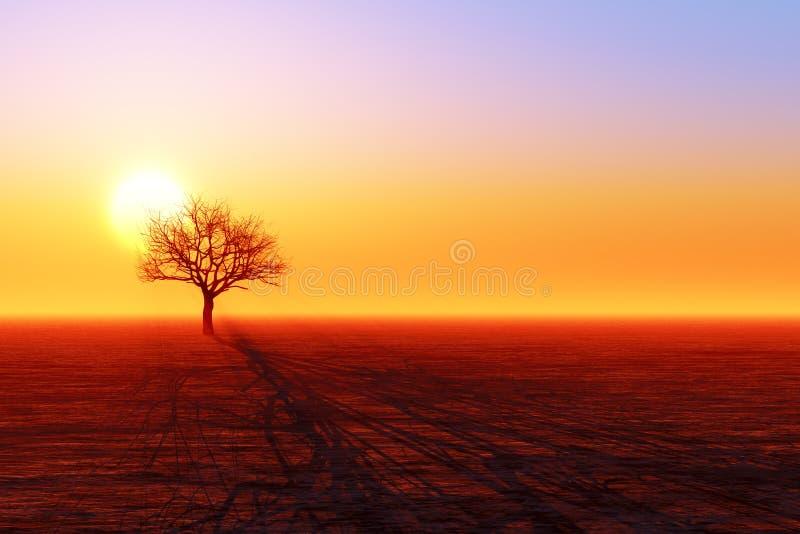 干燥树剪影 免版税库存照片
