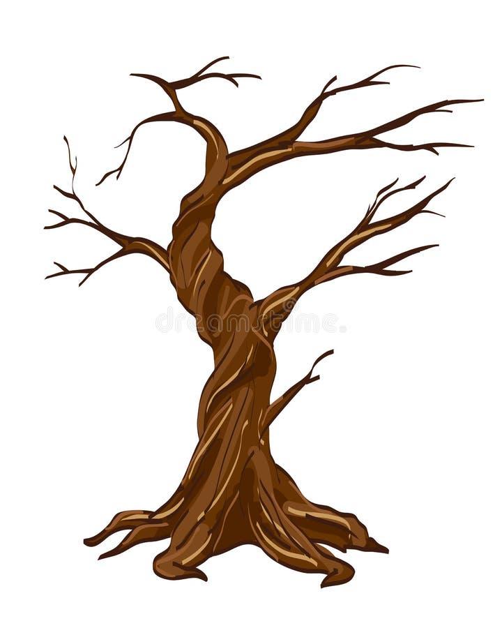 干燥树的传染媒介例证在白色的 库存例证