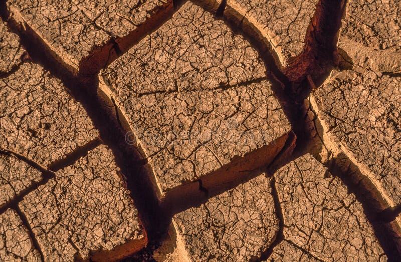 干燥棕色粘土特写镜头在摩洛哥 免版税图库摄影