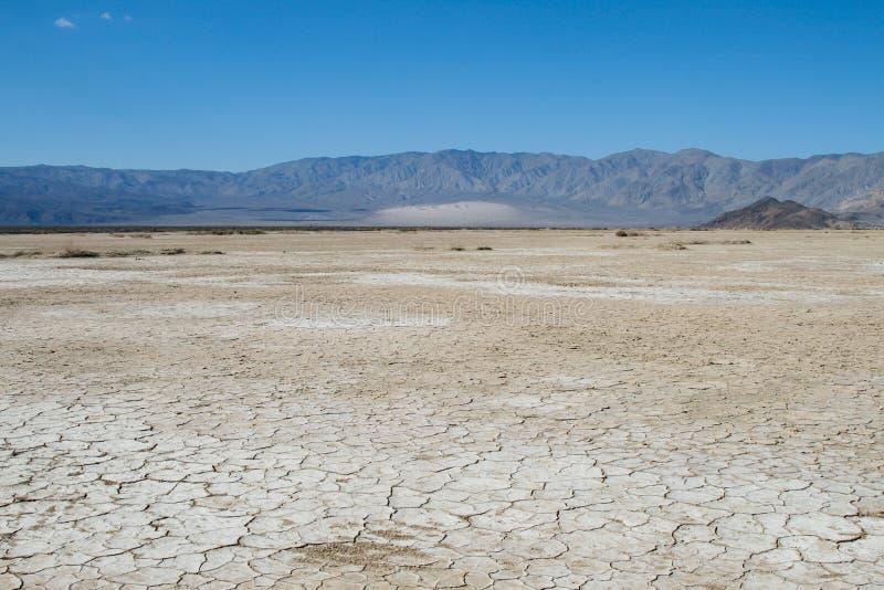 干燥沙漠 免版税库存图片