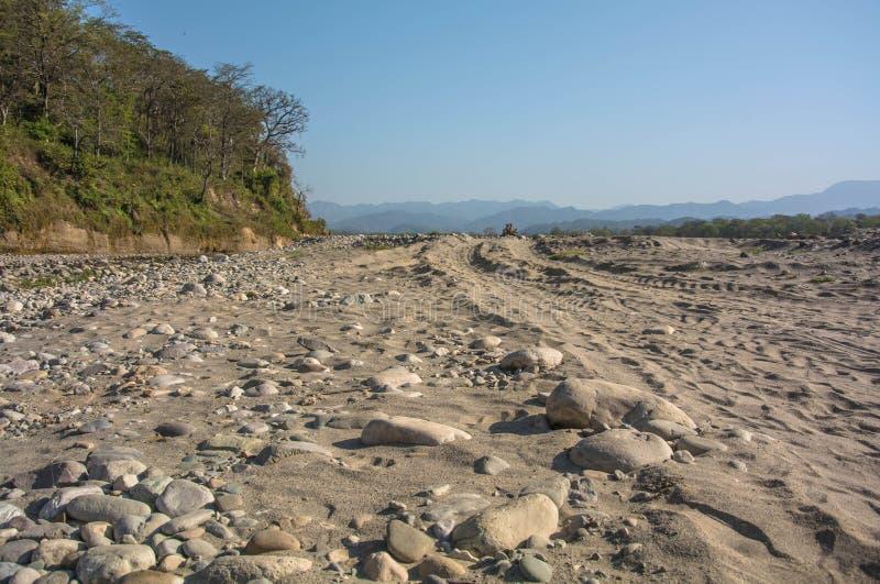 干燥河在早晨 免版税库存照片