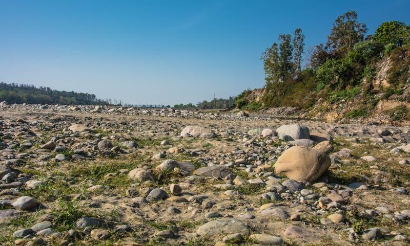 干燥河 库存照片