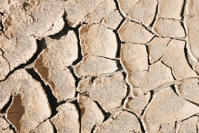 干燥泥沙漠背景纹理 库存图片