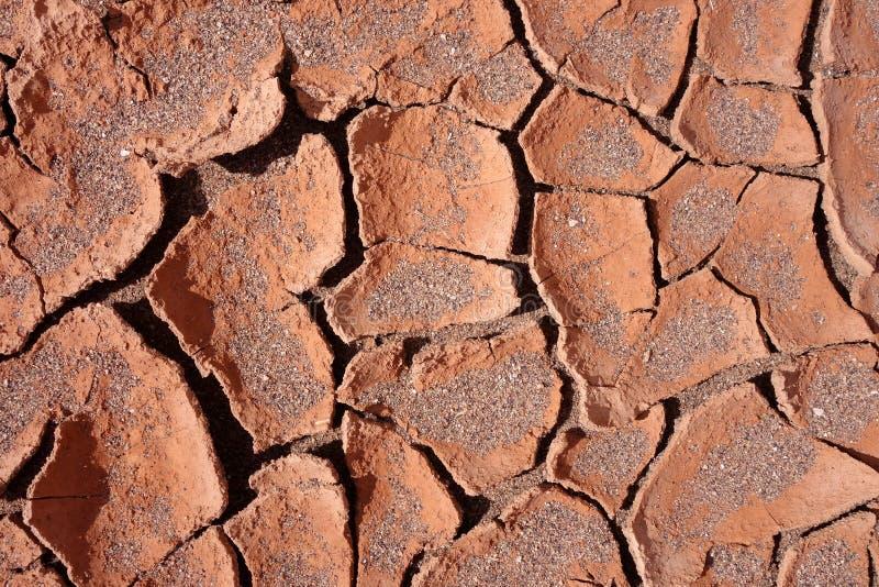干燥泥背景纹理 免版税图库摄影