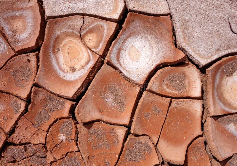 干燥泥背景纹理 库存照片