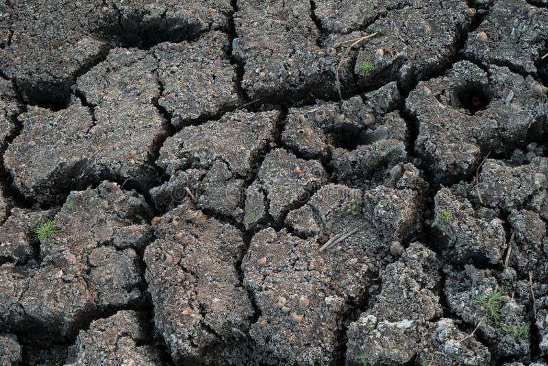 干燥破裂的地球纹理背景 破裂的土壤或泥样式,天旱土地表面  库存图片