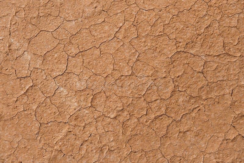 干燥破裂的地球 图库摄影