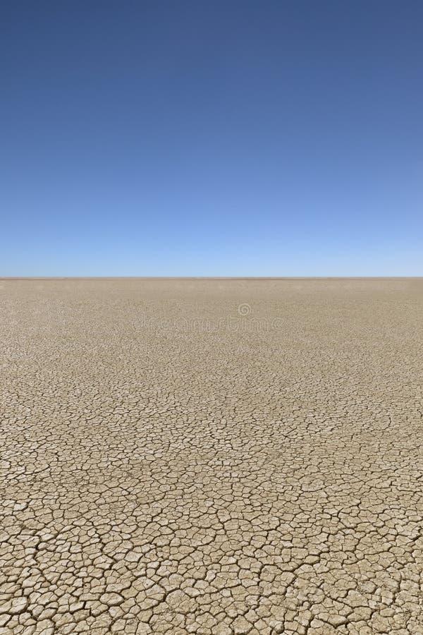 干燥破裂的沙漠 图库摄影