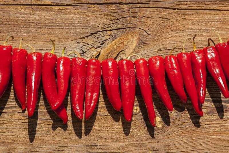 干燥胡椒在阳光下 免版税库存照片