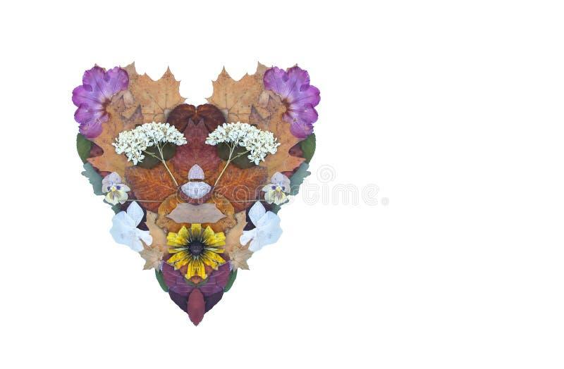 干燥花的心脏、桔子和葡萄柚切片和秋叶 装饰的构成 秋天设计元素 库存例证
