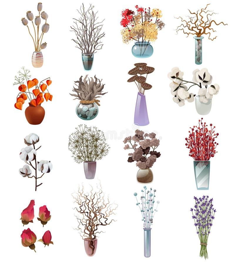 干燥花花束的汇集在花瓶的 库存例证