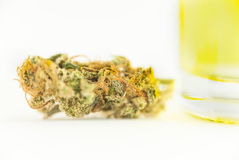 干燥芽的大麻医疗大麻关闭 免版税图库摄影