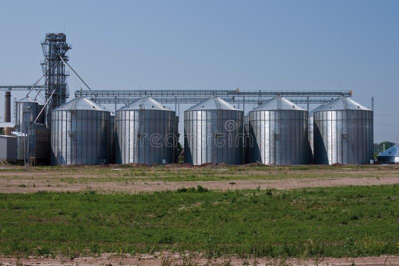 干燥谷物系统 库存图片