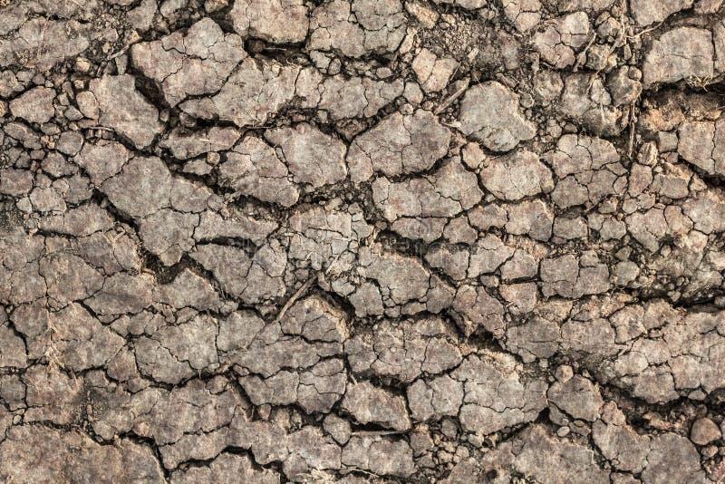 干燥贫瘠被烧焦的土壤破裂的概略的落寞难看的东西表面