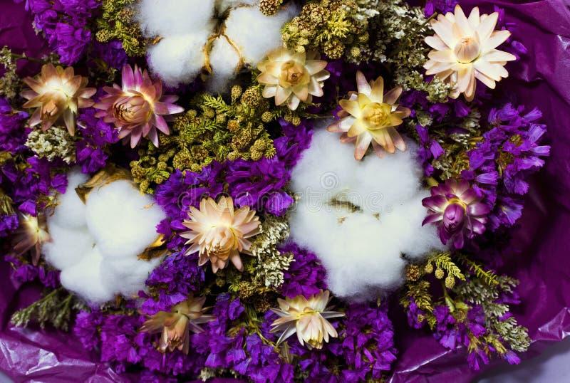 干燥野花和棉花五颜六色的花束  免版税库存照片