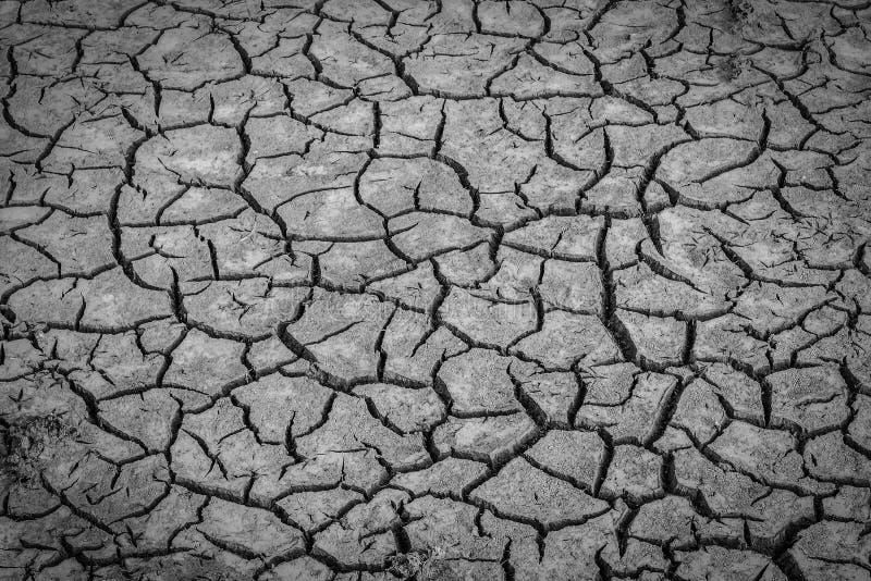干燥破裂的土壤土背景的黑白图象  库存照片