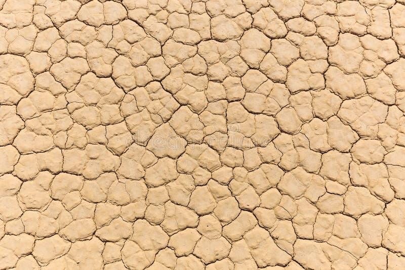 干燥破裂的黏土湖床自然纹理  免版税库存照片