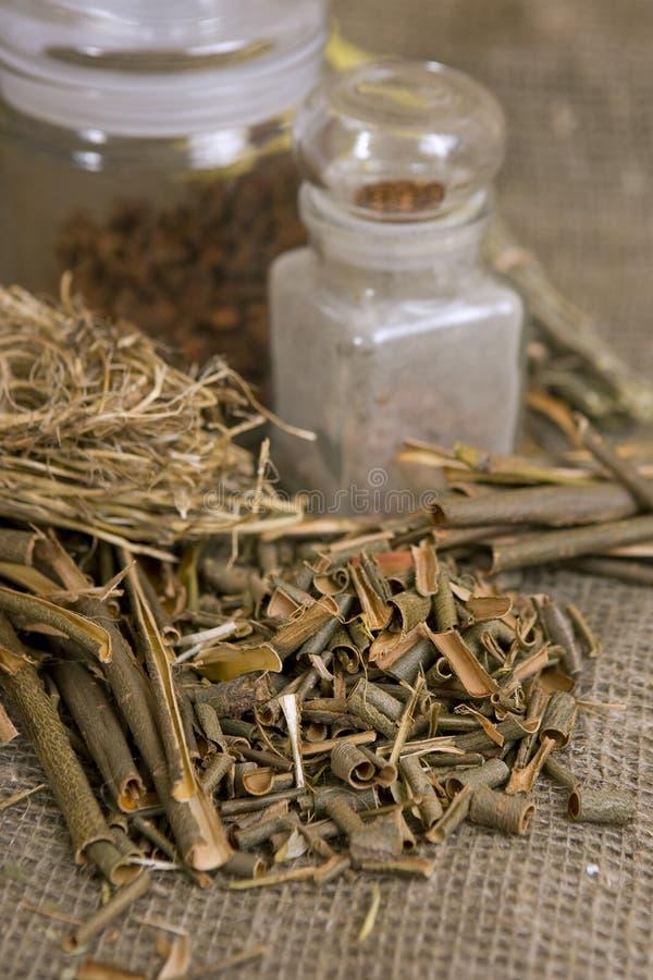 干燥herbals,不同的医药草本-医疗杨柳的吠声 库存照片