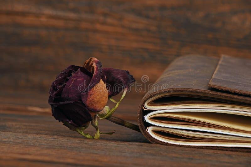 干的笔记本在皮革盖子和在木头上升了 库存图片