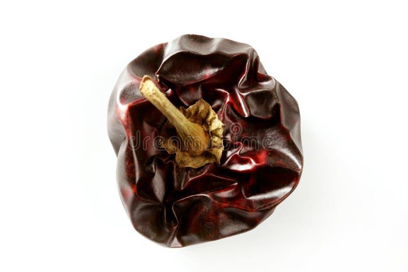 干的黑暗地中海一个以子弹密击红色&# 免版税库存图片